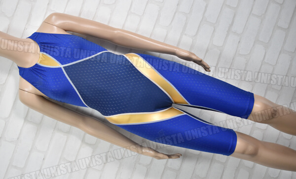 ARENA アリーナ ARN-6006M aile-bleue エールブルー バックジップ型 男子競泳水着 ブルー・ゴールド