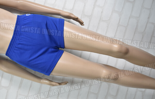 DESCENTE デサント DSP-39W 女子バレーボール ショートパンツ・スポーツパンツ ブルー ネイビー